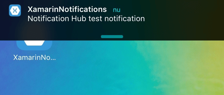 Test Notification