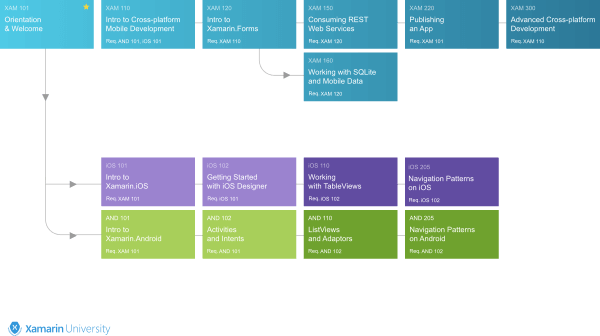 Path to certification diagram (image by Xamarin University)